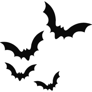 Amazing Biology Facts You Must Know About 8 - Bat fact