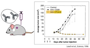 Cancer immunotherapy for human welfare 3