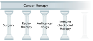 Cancer immunotherapy for human welfare 8