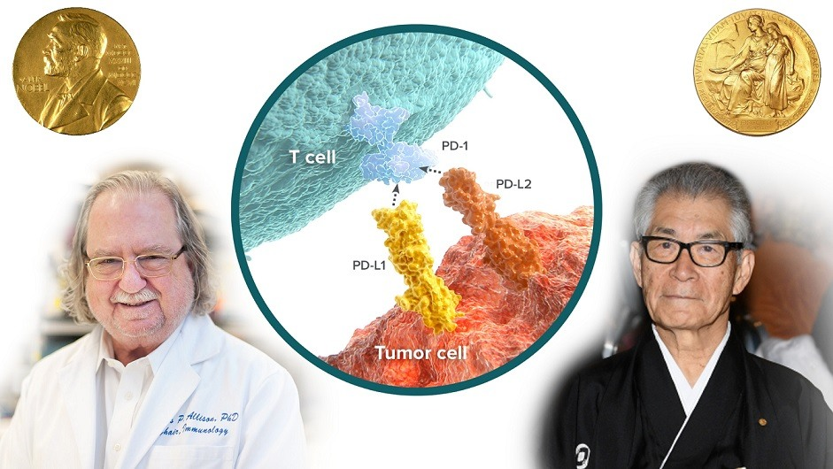 Cancer immunotherapy in human welfare.