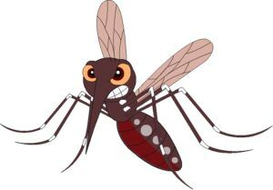 Interesting Chemistry Facts - mosquito