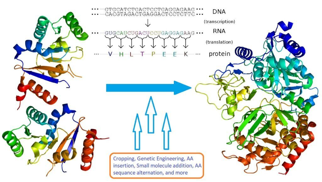 The Advent of Recombinant Peptides [Peptide Drug Discovery – Part 2]