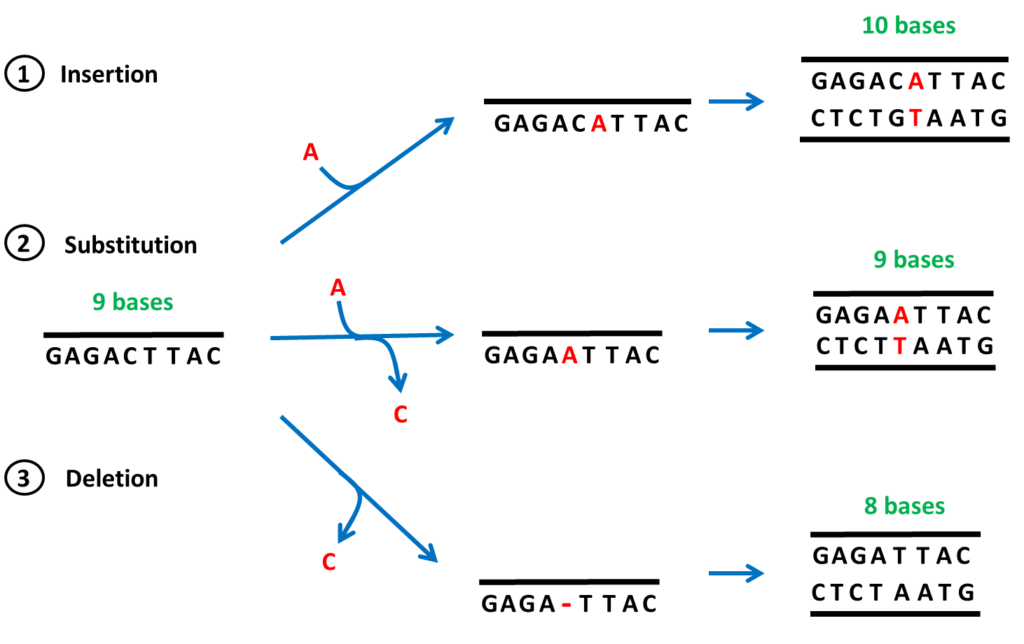 The Advent of Recombinant Peptides - recombinant technology