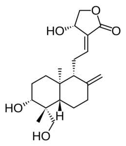 Andrographolide from Andrographis paniculata Extract