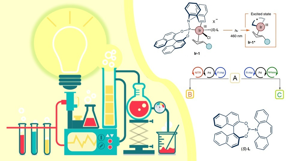 Best Discoveries in Cross-coupling Reaction & C-H activation (May-June 2021)