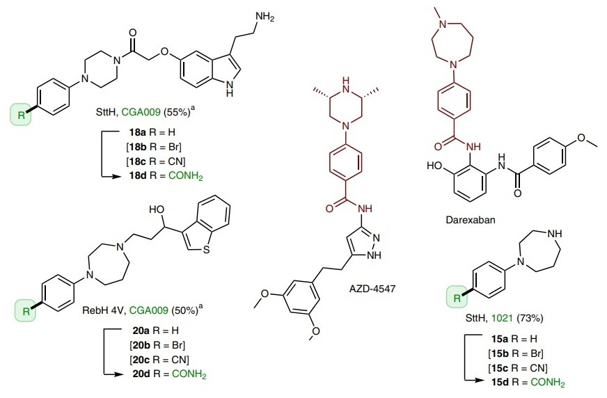 Direct synthesis of medicinal compounds via Cross coupling
