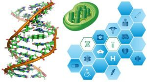Recent Biochemistry News and Research Highlights (May-June 2021)